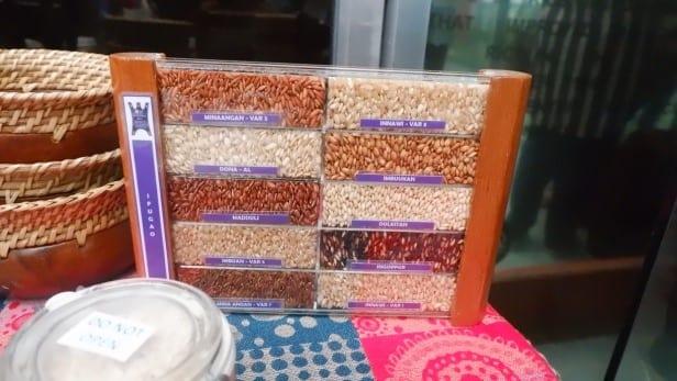 Pameran koleksi varietas padi unggulan di IRRI